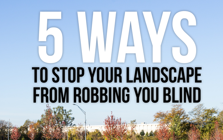 5 Hidden Landscape Costs That are Robbing your Blind
